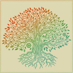 mandala-arbre-de-vie-fotolia1